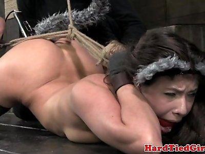 Hammerlock kitten play sub gets toyed