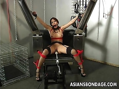 busty in BDSM porn videos