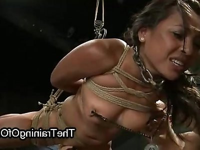 Bound busty tanned brunette sucking